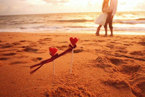 honeymoon, loving couple on the beach