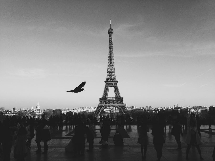 louis-pellissier-319-unsplash